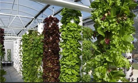 tower garden for is a journey tower gardens our newest garden addition