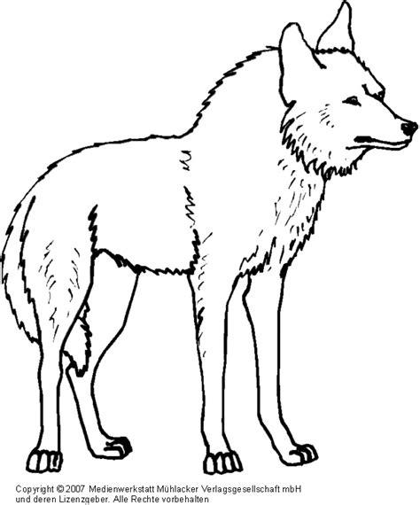 wolf vorlagen kostenlos wolf 2 medienwerkstatt wissen 169 2006 2017 medienwerkstatt