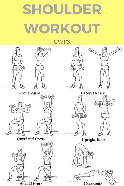 Sculpt And Tone Your Delts With This Shoulder Workout. Office Space For Lease Dallas. Best Website Hosting For Photographers. Real Time Free Stock Quotes Ak Tire Service. Camera Document Scanner Self Storage Savannah. Boston College Mba Program Nsa Facility Utah. Rio Salon Laser Hair Remover. Chemical Spill Containment Green Tree Dental. Naval Academy Enrollment Fruits Good For Dogs