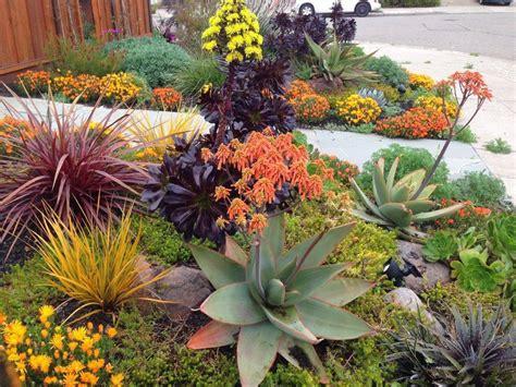 Sukkulenten Garten Anlegen by Drought Tolerant Landscapes Sukkulenten Garten