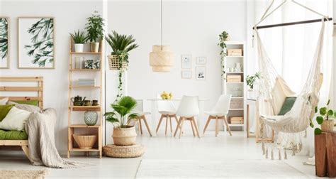What Is Vegan Home Decor: All You Need To Know