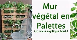 Mur Végétal En Palette : mur v g tal en palettes on vous explique tout sant nutrition ~ Melissatoandfro.com Idées de Décoration