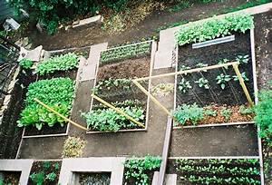A Little Bit Country Dreaming Ofa Kitchen Garden
