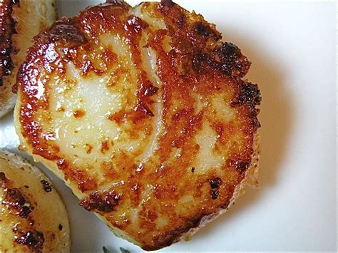 fried scallops fried scallops seafood pinterest