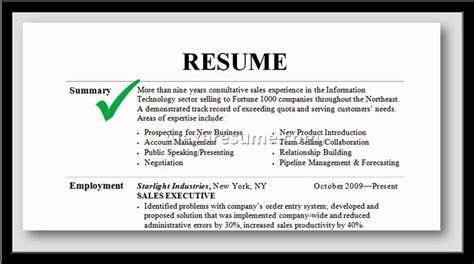 Professional Resume Summary by Professional Summary On Resume Project Scope Template