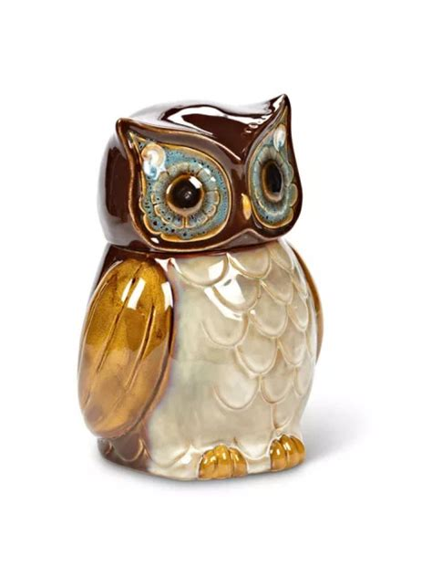 Owl Canisters For The Kitchen by 80 Best Images About Owl Kitchen On Vintage