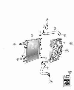 2015 Jeep Wrangler Hose  Radiator Outlet  Cooling