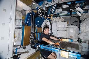 JAXA Astronaut Koichi Wakata working out on the aRED ...