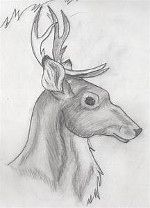 19 best Sketchs images on Pinterest | Cool drawings ...