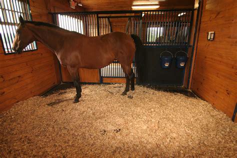 stall horse bedding horses thrush fresh hunter clean barn equestrian mattress harrison much treatment causes true symptoms piece igk things