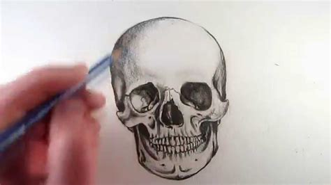 How Draw Realistic Skull Narrated Step Youtube