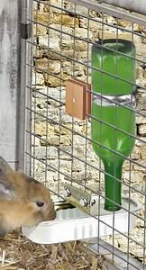Maison Pour Lapin : faire un abreuvoir automatique pour les lapins ~ Premium-room.com Idées de Décoration