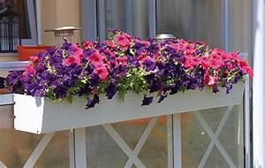 Solarstecker Für Blumenkästen : blumenk sten von fbs f rster balkon systeme ~ Markanthonyermac.com Haus und Dekorationen