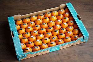 Machine A Orange Pressée : bienvenue sur le site internet lolitas sp cialiste des agrumes non trait es et jus d 39 orange ~ Melissatoandfro.com Idées de Décoration