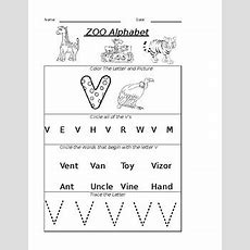 The Letter V Worksheet By Pointer Education  Teachers Pay Teachers