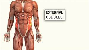3 Oblique Workouts That Build A Strong  And Ripped  Core