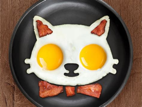 fred funny side  egg moulds turn fried eggs  animals