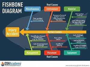 Auditing And Cause Analysis Oshacademy Free Online Training