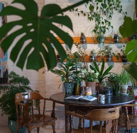 Hängende Pflanzen Wohnung by Summer Oakes Ein Leben Zwischen 500 Pflanzen