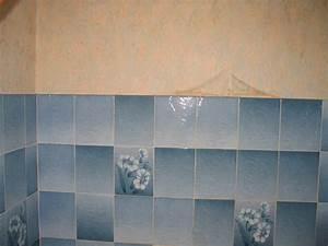 Panneau Hydrofuge Salle De Bain : carrelage mural salle de bain ~ Dailycaller-alerts.com Idées de Décoration