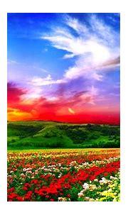 Download Free Beautiful Full HD Wallpapers | PixelsTalk.Net