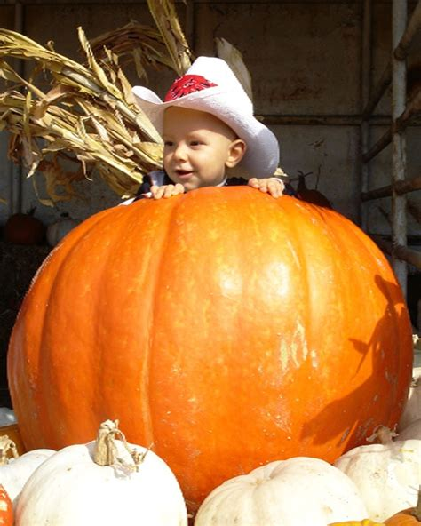 Best Pumpkin Patch Fort Worth Tx by Storybook Ranch Pumpkin Patch Free Software And