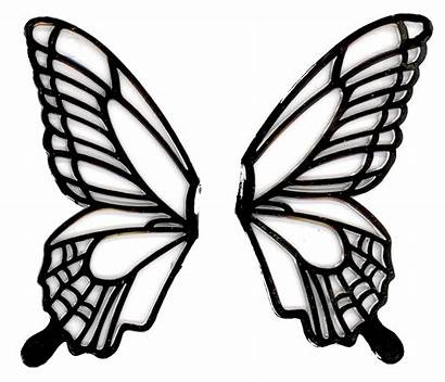 Butterfly Drawing Wings Wing Clipart Easy Outline