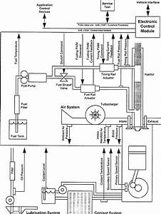 30 Cummins Pt Fuel Pump Diagram