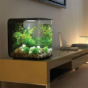 Petit Aquarium Design : aquarium design id es originales de meubles aquarium ~ Melissatoandfro.com Idées de Décoration