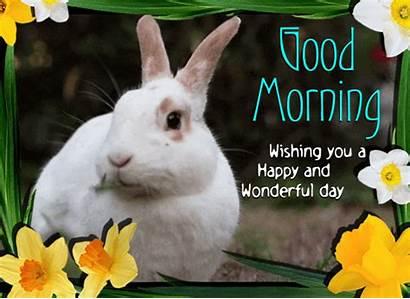 Morning Happy Wonderful Greetings Very Card Ecard