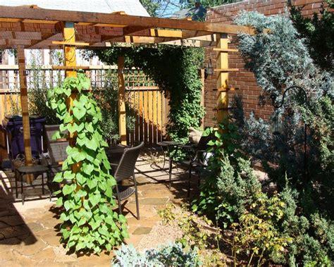 Deco Design Jardin Terrasse Jardin En Terrasse Quelle D 233 Co
