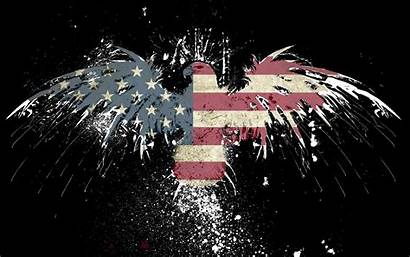 Usa Eagles Flag American Wallpapers Backgrounds Bird