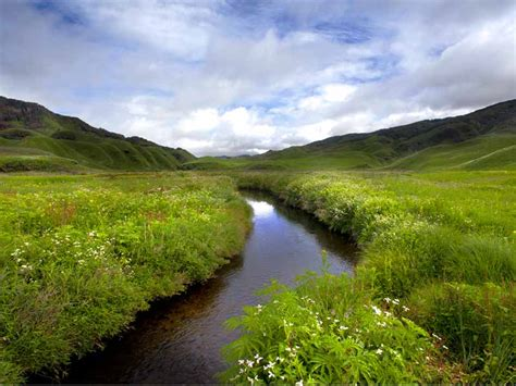 dzukou valley trek  nagaland  season itinerary