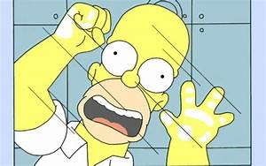 Homer Simpson Wallpaper 22962 1920x1200 px ~ HDWallSource.com