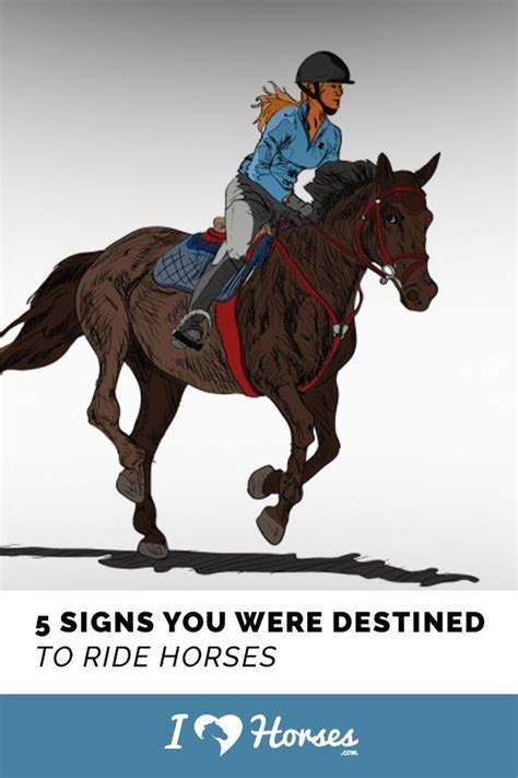 were horses horse riding facts signs ride there horseback ihearthorses rider