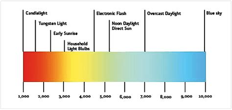 Spectrum Light Bulb by How Well Do Led Grow Lights Work For Growing Plants Indoor