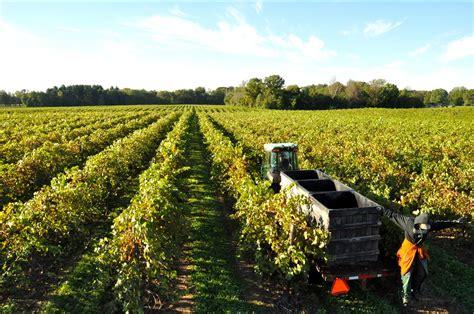 lemon creek fruit farm winery michigan farm fun