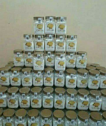 Bibit Collagen Original Cv jual beli bibit collagen original by cv mecca anugrah