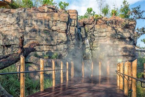houston zoo   bellows construction corporation
