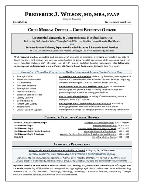 Executive Resume Writer by Chief Officer Sle Resume Executive Resume