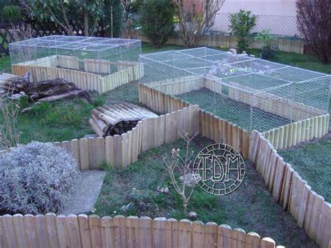 exemple d enclos pour tortues adultes