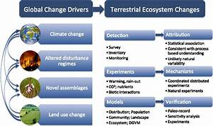 Global Change And Terrestrial Plant Community Dynamics