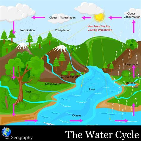 the water cycle kidspressmagazine