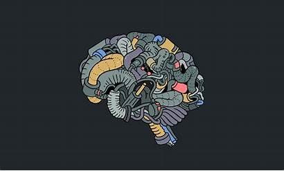 Ai Intelligence Artificial Brain Crunchbase Observe Learn