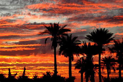 Sunset in Yuma, Arizona   Ted Schredd   Flickr