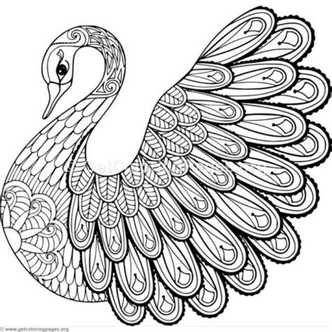 easy zentangle coloring pages getcoloringpagesorg