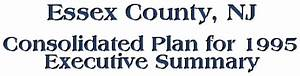 Essex County Consolidated Plan for 1995 Executive Summary