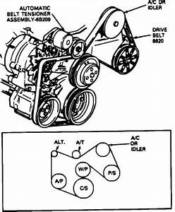 search results for ford 302 serpentine belt diagram With belt diagram ford 302 serpentine belt diagram timing belt diagram ford