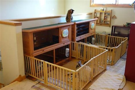 peel and stick carpet tiles for stairs large indoor rabbit hutch diy rabbit cage ideas