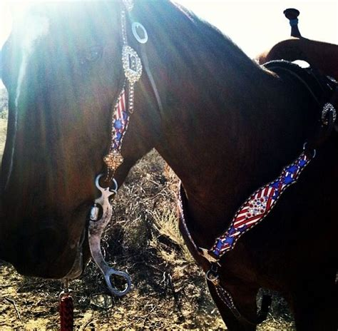 foto de 55 best images about Horse stuff on Pinterest Red white